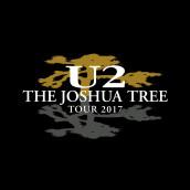 U2 tornano live