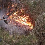A fuoco un campo di ginestre a Luogosano