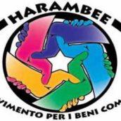Harambee – Analisi e prospettive politiche