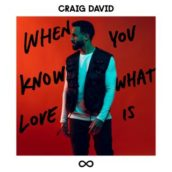 Craig David – When You Know What Love Is