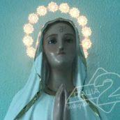 Vandalizzata la statua della Madonna all'ospedale di Polla
