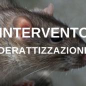 Ariano Irpino, intervento di derattizzazione su tutto il territorio comunale