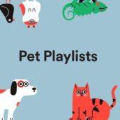 Spotify lancia le playlist musicali per animali
