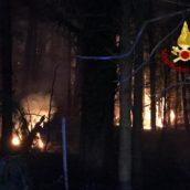 Serino, incendio in un bosco