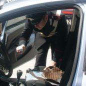 Valle Caudina, servizi antidroga da parte dei Carabinieri della Compagnia di Avellino