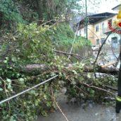 Video/Pioggia e forte vento in Irpinia.Vigili del Fuoco al lavoro