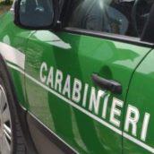 Violazione alle norme in materia ambientale:due denunce da parte dei Carabinieri