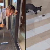 Francesco Totti dà la caccia ad un topolino in casa: il video è esilarante