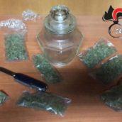 Sorpreso in possesso di mezzo etto di marijuana: 24enne arrestato per spaccio