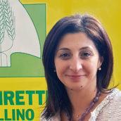 """Coldiretti Avellino: """"Scongiurato schiaffo ai nostri giovani imprenditori"""""""