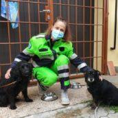 A Lucca dei volontari portano a spasso i cani di chi è in quarantena