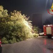 Maltempo in Irpinia: numerosi interventi dei caschi rossi