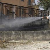 Benevento, nuovo ciclo di interventi di derattizzazione in città