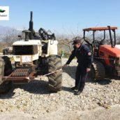 Sannio, azione di prevenzione e repressione dei reati contro il patrimonio forestale da parte dei Carabinieri