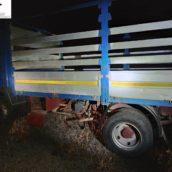 Amorosi, ritrovati i trattori e l'autocarro rubati al Parco naturalistico del Volturno
